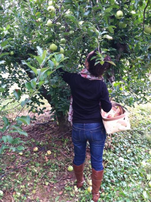 Brandie Apple Picking 2