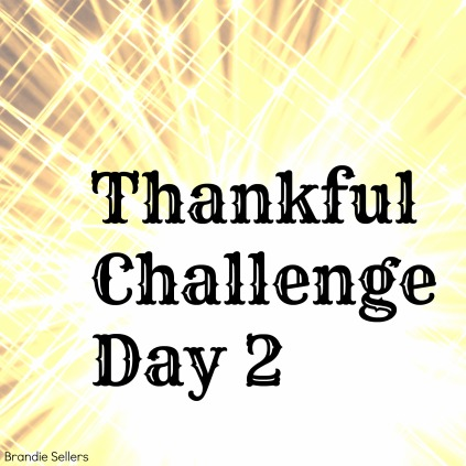 Thankful Day 2