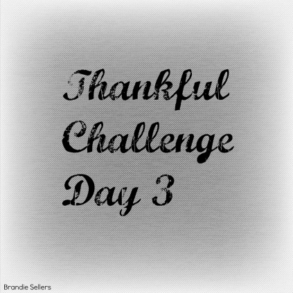 Thankful Day 3