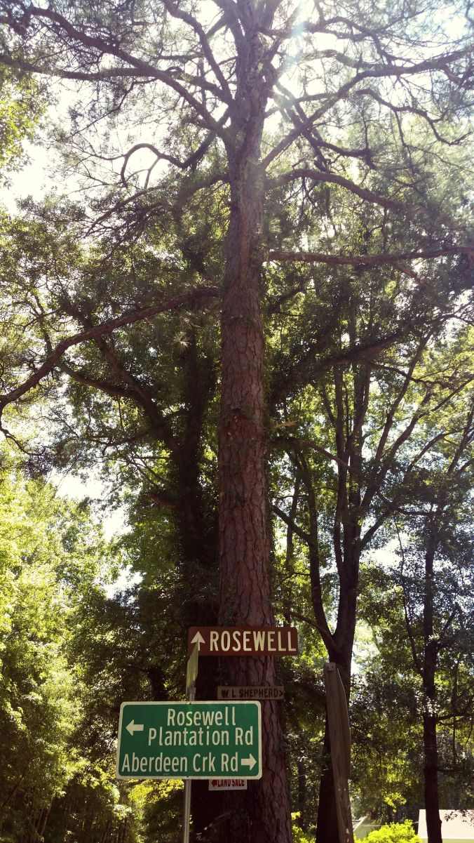 Rosewell sign