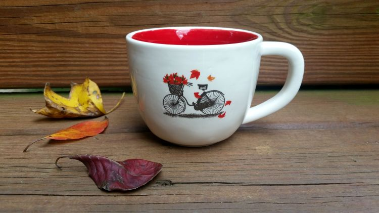bike with fall leaves mug brandie-sellers.com