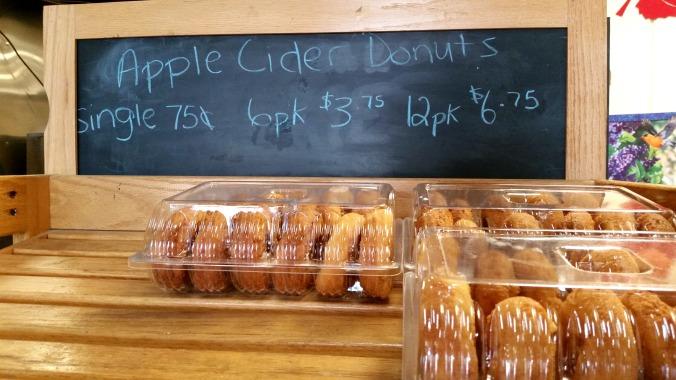 apple picking 17  brandie-sellers.com
