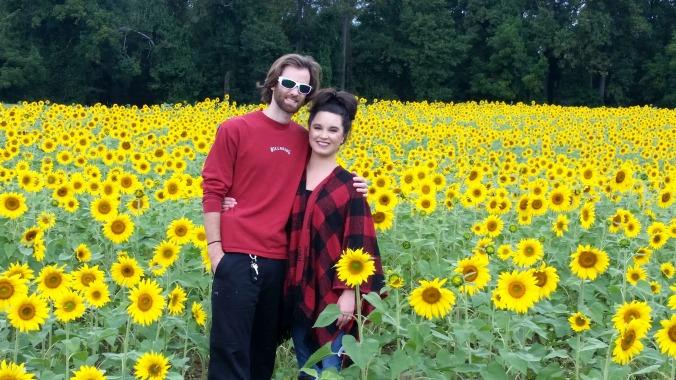 sunflowers  brandie-sellers.com