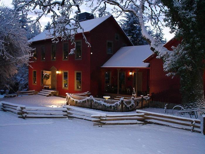 White Christmas 8