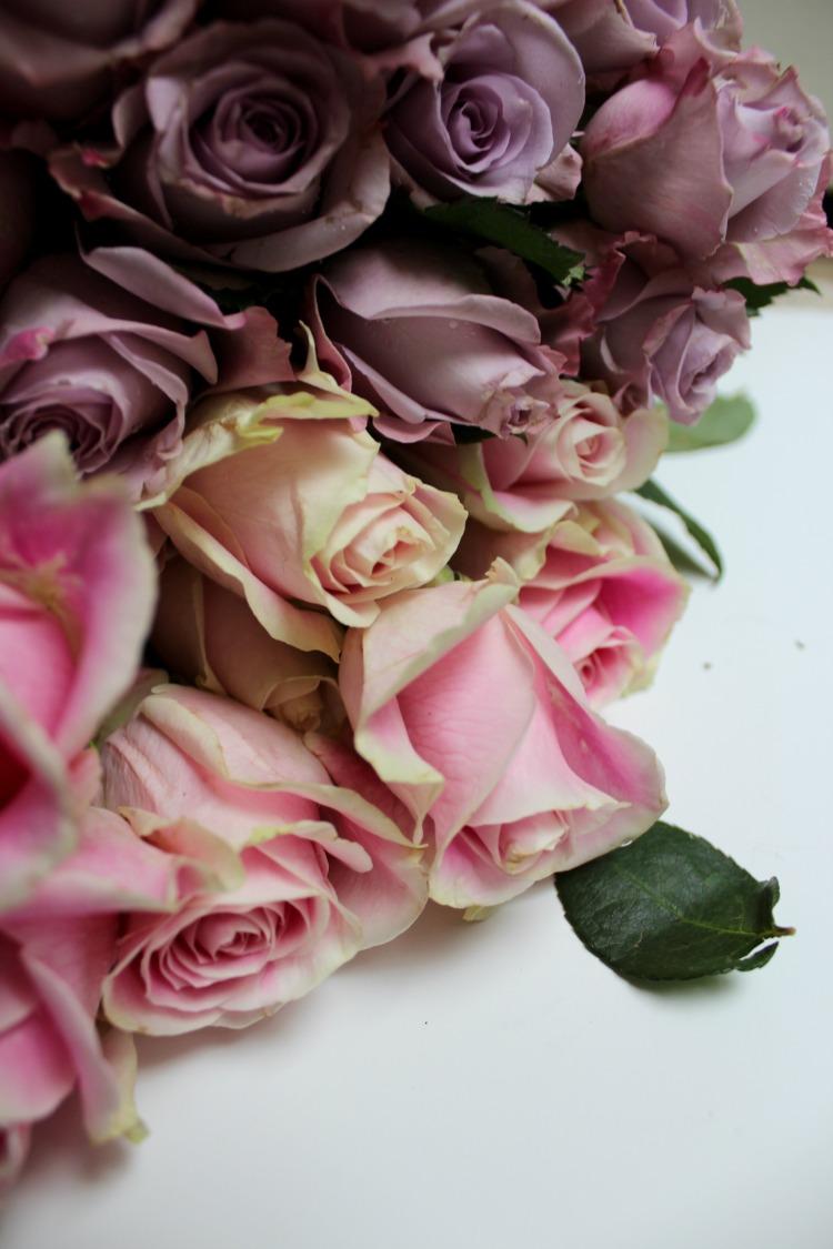 roses  brandie-sellers.com