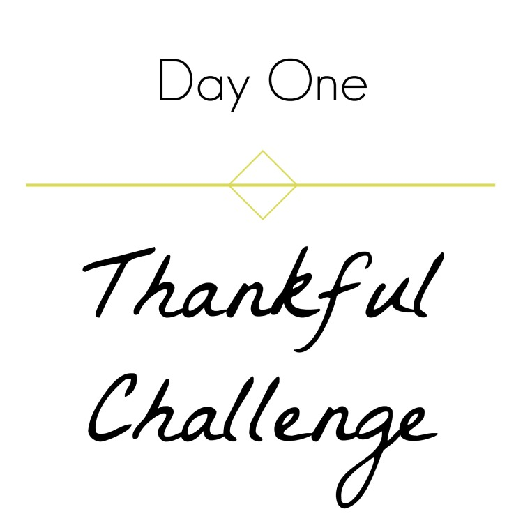 thankful-challenge-day-1-brandie-sellers-com