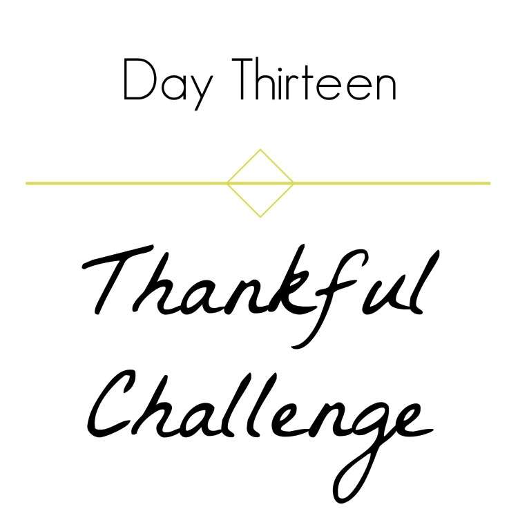 thankful-challenge-day-13-brandie-sellers-com