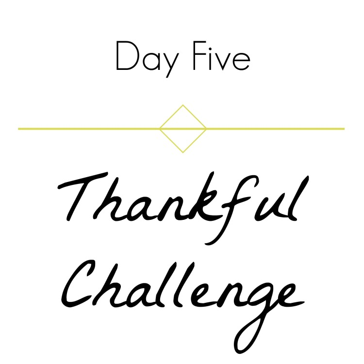 thankful-challenge-day-5-brandie-sellers-com